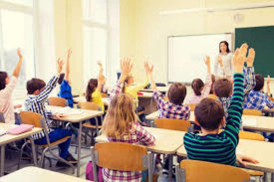 Devlet Okulları , Özel Okullar